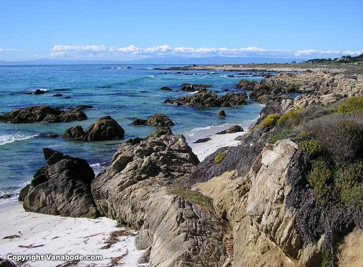coast line along the 17 mile private pay to get in section of California near  Carmel by the Sea  picture